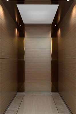 What kind of places are passenger elevators suitable for