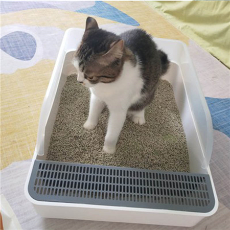 Does the cat litter box have to be prepared for the cat