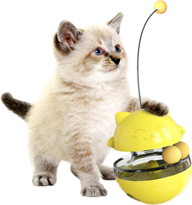 cat products,What are the common cat products and how to choose