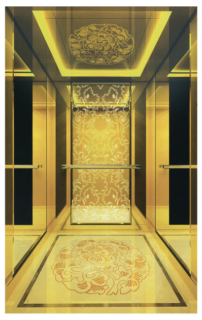 What are the characteristics of a professional passenger elevator company