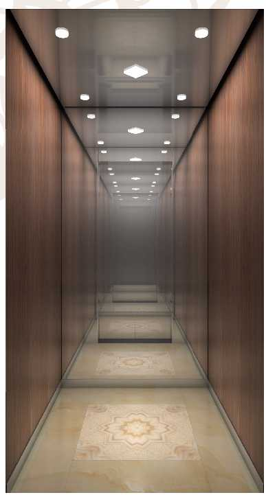 Introduction of special elevators