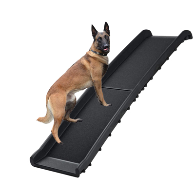 What are the essential dog supplies during the rainy season