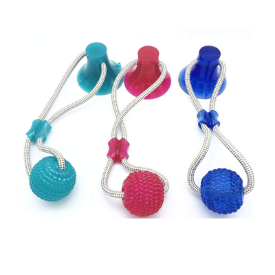 What are the key points for selecting dog accessories