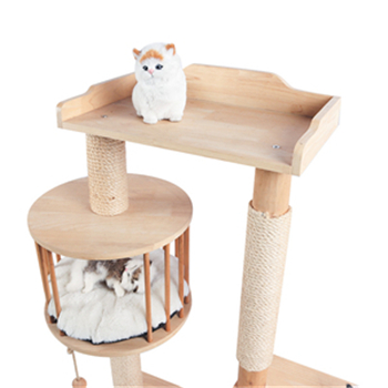 How to choose cat supplies that cats like