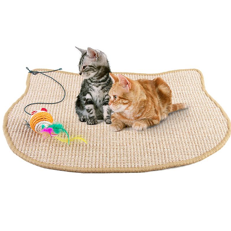 Wholesaler of cat accessories