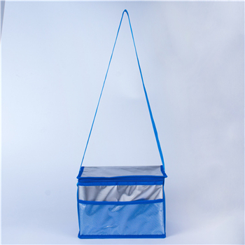 What is the current status of the cooler bags market