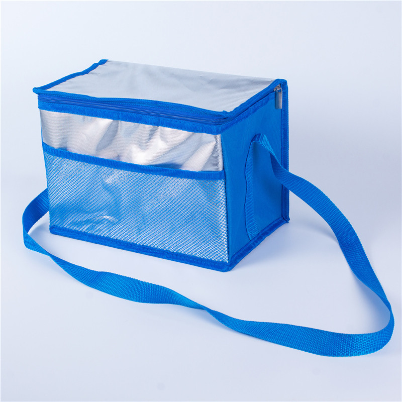 Big cooler bags for food