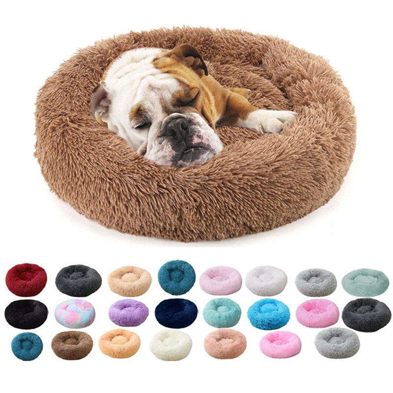 China pet accessories supplier
