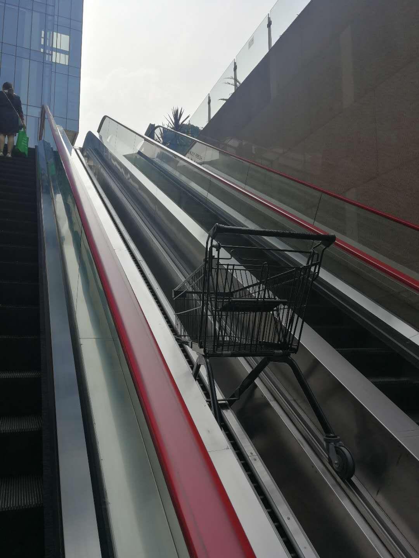 Shopping cart escalator