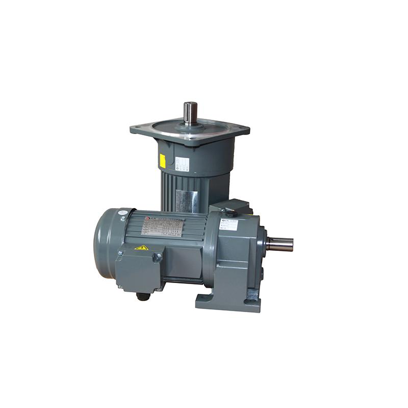 AC gear reduction motor