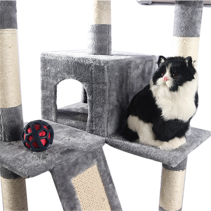 cat crawls with a nest