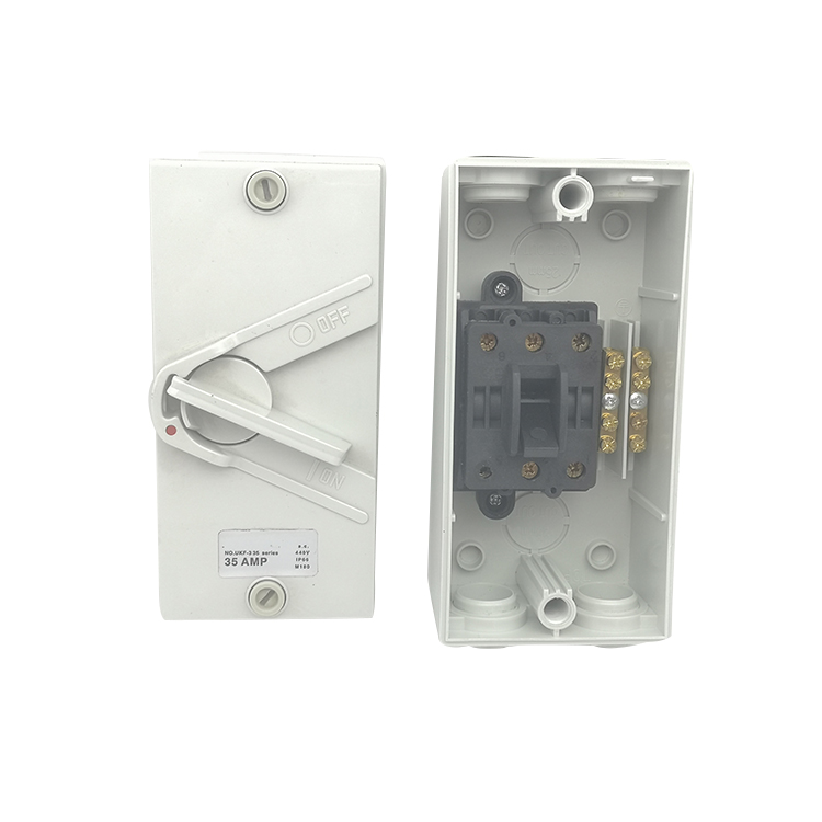250V 20A 2 Pole SAA Electrical Isolator Switch