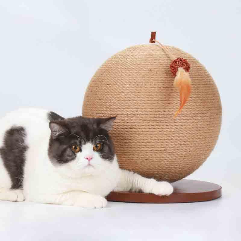 pet cat scratcher Supplier