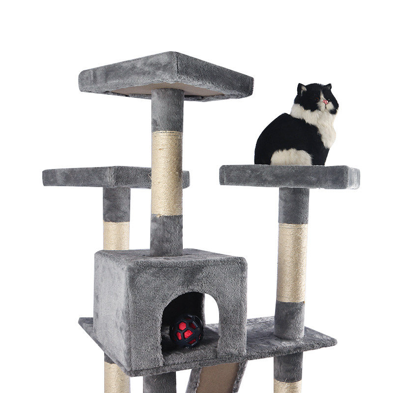 The grey cat crawls with a nest pet product
