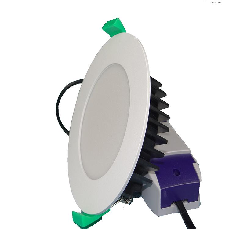 LED Downlight with Plug