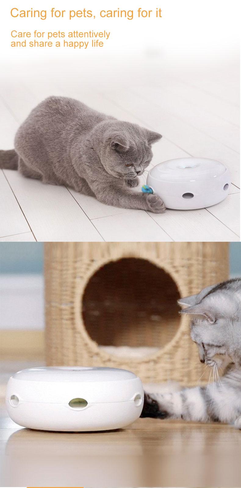 cat teaser pet product