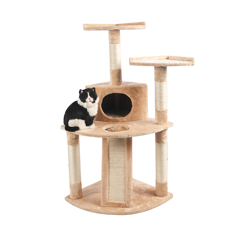 Small brown cat climbing frame