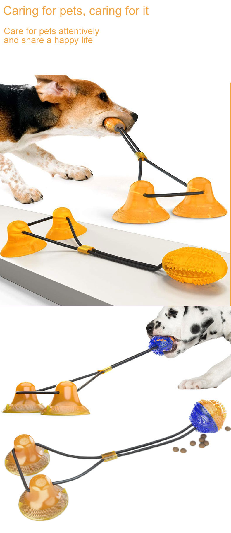 Pet molar product Supplier