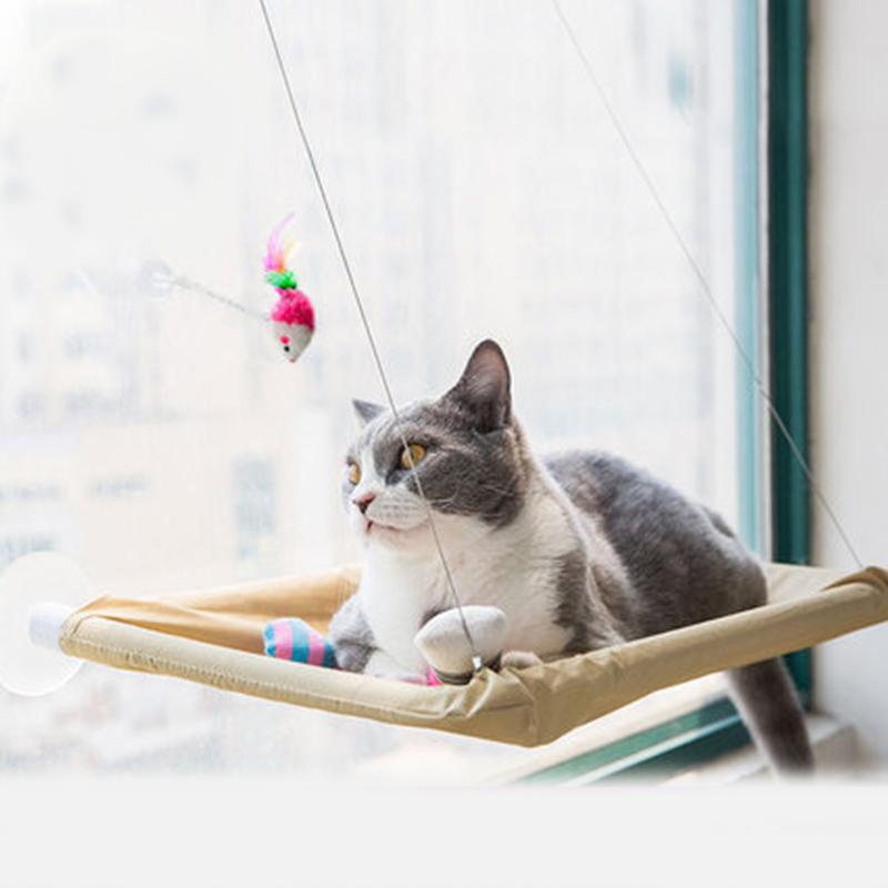 cat hammock for large cats