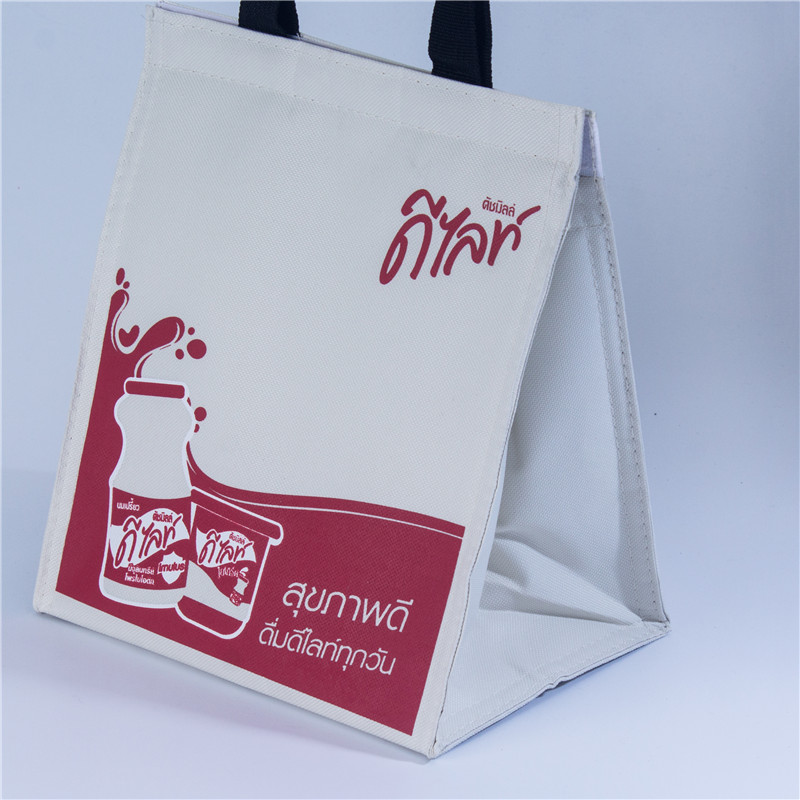 Cooler bags for groceries