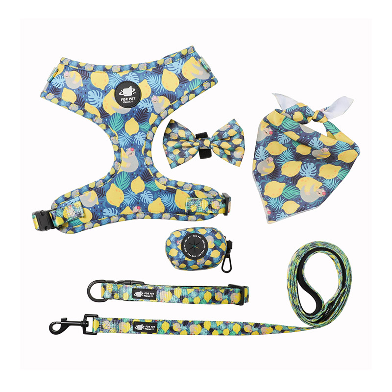 China dog accessories distributor