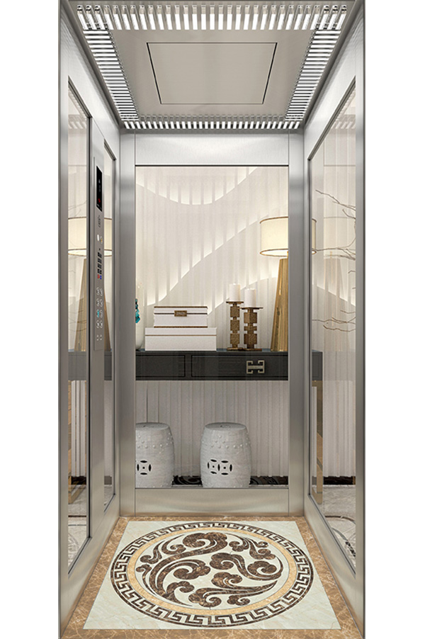 Beautiful Glass car wall Home Elevator