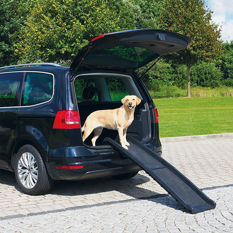 plastic ramp for dogs